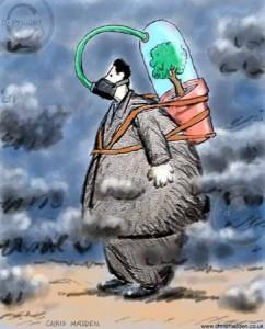 حرائق الغابات وغاز الرادون , بحث عن حرائق الغابات ، مقال عن التلوث الناتج من حرق الغابات