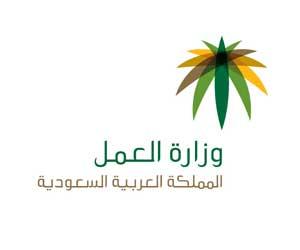 أخبار صحيفة الوطن اليوم الاحد 20-6-1435 , العمل تضبط 210 مخالفات في مكة المكرمة