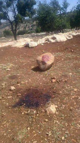 مقتل بتول حداد بسبب اشهارها اسلامها اليوم 2014 , صور مقتل بتول حداد بمحافظة عجلون