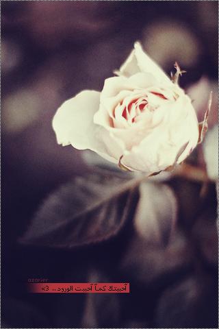 خلفيات جميلة جالاكسى , رمزيات جالسكي مميزة , صور جالكسي رائعة 2015