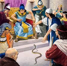 شاهد بالفيديو سر خدعة سحرة فرعون فى تحويل العصى الى حيات تسعى