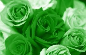 اللوان الاخضر في المنام , الخضره في الحلم