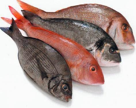 السمك في الحلم , تفسير حلم اكل السمك ني , معنى اكل السمك ني