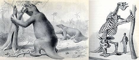 صور حيوانات منقرضة , بحث عن الحيوانات المنقرضة بالصور