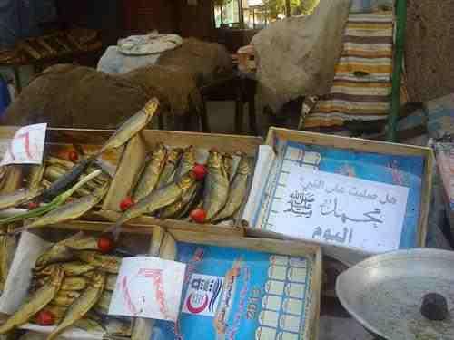 ملصق هل صليت على النبي اليوم في شوارع مصر