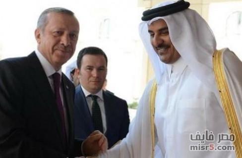 حكومة مصر فاشلة وقطر وتركيا هما الحل لأزمة غزة