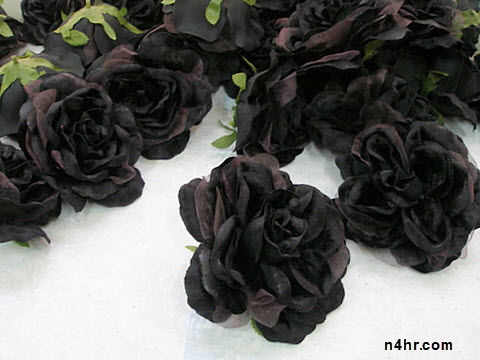 الدولة المشهورة بزهور التوليب هي هولندا , الزنابق السوداء , السوسنة السوداء