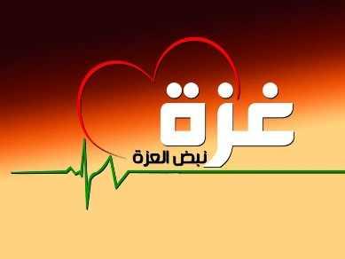 أهم أخبار فلسطين الثلاثاء 11/11/2014