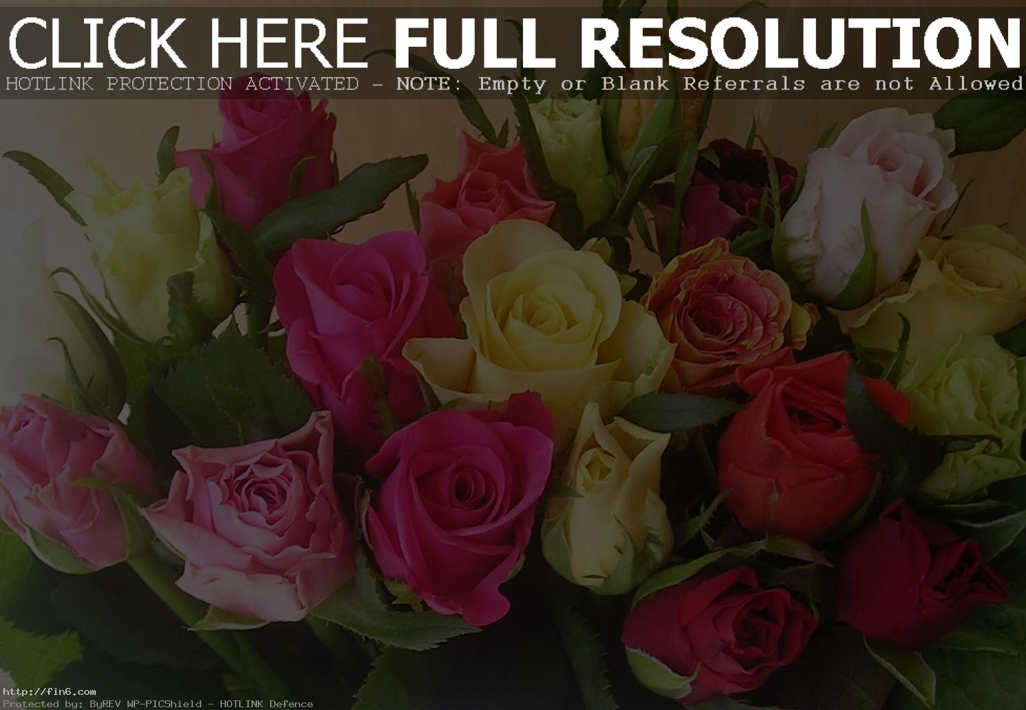 ��� ��� hd , ������ ����� ����� ������ , ��� � ������ , Flowers wallpapers