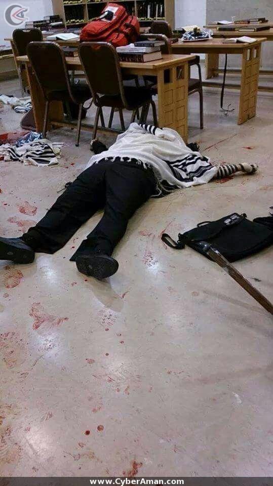اخبار فلسطين اليوم الثلاثاء 18-11-2014 فيديو عملية القدس الجديدة بالتفاصيل الآن