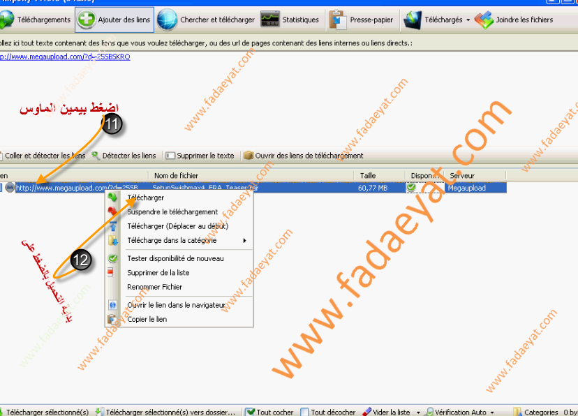 شرح تحميل الملفات من Rapidshare - Megaupload – HotFile مرات متعددة ومن غير ملل أو انتظار