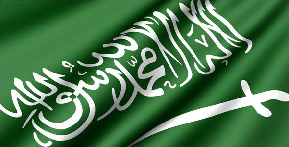 أخبار السعودية السبت 29-1-1436 أحداث السعودية