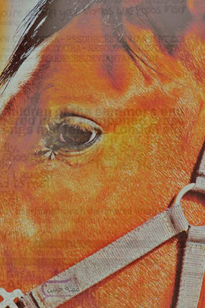 صور اي فون خيول 2015 , صور خيول اي فون 2016 ، احدث صور اي فون خيل