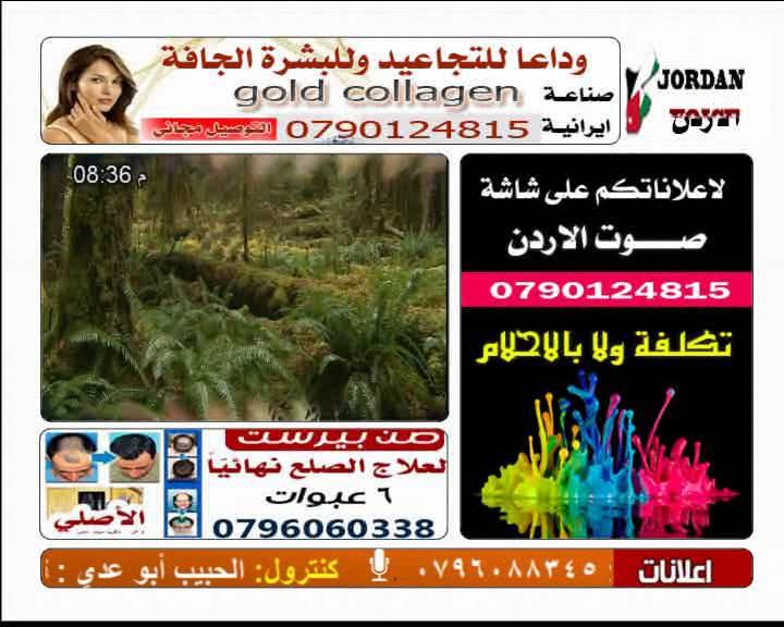 ���� ���� ���� LIBO TV �� �� ��� ������ , ������ ����� ������