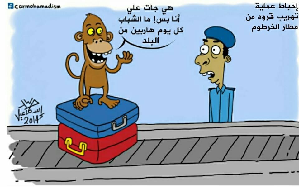كاريكاتير سوداني مضحك احباط عملية تهريب قرود مطار الخرطوم