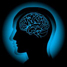 تفسير حلم الدماغ , معنى دماغ بالمنام , رؤية حلم الدماغ