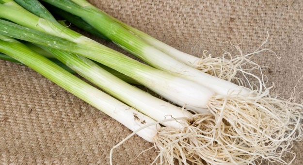 فوائد البصل الأخضر فى شم النسيم