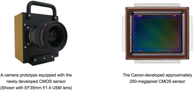 حساس كاميرا 250 ميغابكسل من كانون