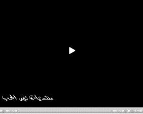 معركة صفين - موقعة صفين - قصة الفتنة
