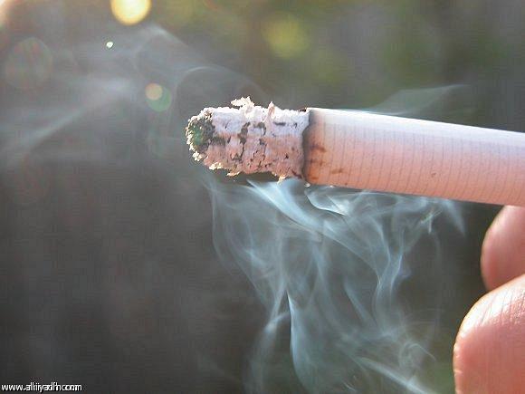 تفصيل واسباب ارتفاع أسعار الدخان في السعودية