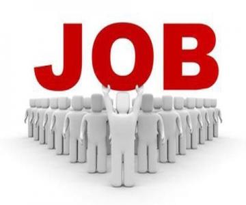 وزارة العمل تعلن توفر فرص عمل للأردنيين والأردنيات وحوافز جيدة