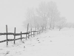 تفسير حلم سقوط الثلج الأبيض في المنام , معنى رؤية سقوط الثلج تفسير حلم سقوط الثلج الأبيض في المنام