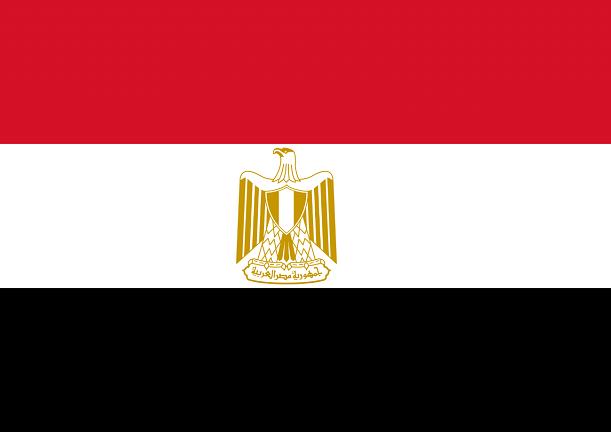تعرف على قصص الأعلام العربية ما الذي تعنيه الوانها و رموزها