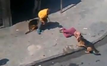 تفاصيل فتاة سورية هزت دمشق ماتت فبدأ كلباها بأكلها
