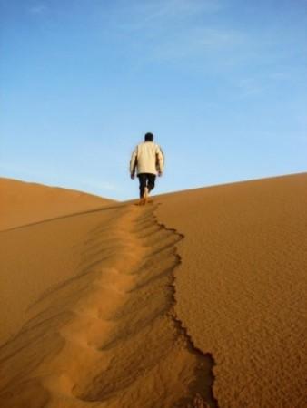 تفسير رؤيا الصحراء - معنى الصحراء في الحلم - تفسير حلم الارض الواسعة