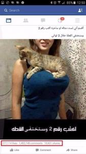 الصورة التي اجتاحت صفحات فيسبوك فتاة على صدرها قطة ما قصتها