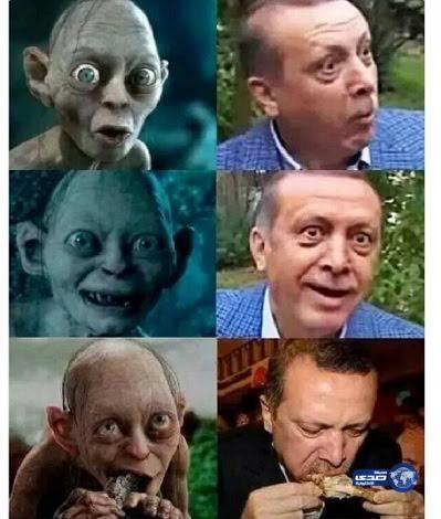 صورة ساخرة لأردوغان تهدد طبيب تركي بالسجن