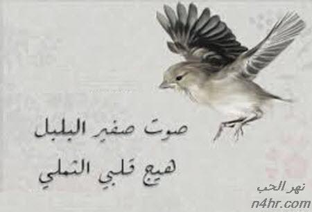 قصة قصيدة صوت صفير البلبل و قصة الشاعر الأصمعي