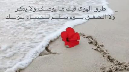 كلمات شيلة طرق الهوى فيك مايوصف ولا يذكر 2015