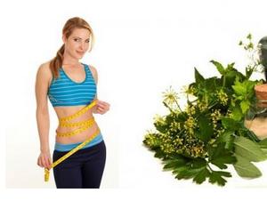 طريقة انقاص الوزن عن طريق اعشاب التخسيس القرفة الزنجبيل الكركم الهيل
