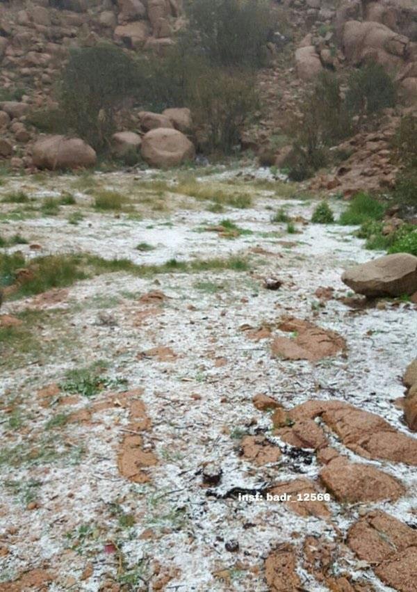 تساقط الثلوج بقمة جبل رضوى , بالصور تساقط الثلوج على قمة جبل رضوى في ينبع بالمدينة المنورة