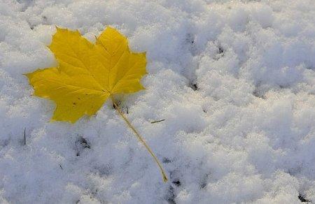 خواطر وكلمات عن الثلج , اشعار عن الثلوج ,  قصيدة مكتوبة عن البرد