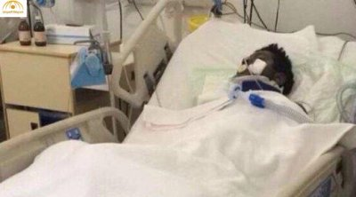 حقيقة خبر وفاة اللاعب سعود حمود لاعب النصر والشعلة