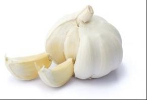 معلومات عن الثوم المعمر يسهيل عملية الهضم