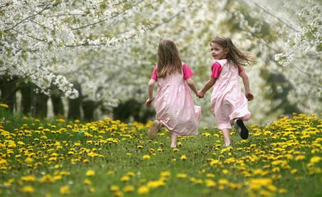 عبارات قصيرة عن الجمال , مسجات عن فصل الربيع , اشعار عن الطبيعة