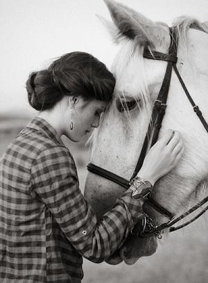 صور فرس ابيض , خلفيات روعة للحصان الابيض , حصان ابيض على البحر