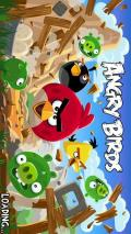 ����� ���� ������ ������� Angry Birds ����� ��� 305 - ����� ��� 305 ����� ����� ��� 305 Nokia Asha