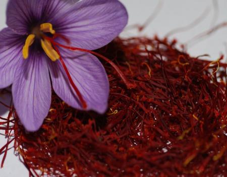 الزعفران أحدث العلاجات الطبيعية ضد السرطان