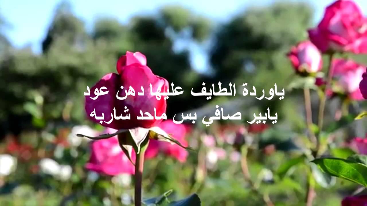 شعر عن الطائف , قصائد مدح عروس المصايف , اشعار عن اهل الطائف