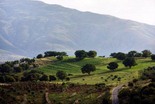 حالة الطقس الاربعاء 27-8-2014 أجواء صيفية اعتيادية في أغلب مناطق المملكة
