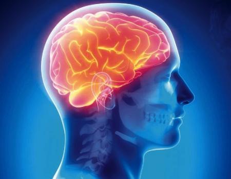 اللغة الثانية تساعد مصابي سكتة الدماغ في التعافي سريعاً