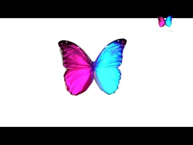 احدث تردد قناة ماجستيك سينما MAJESTIC CINEMA بعد الايقاف 2017 قنوات الافلام الاجنبية 3d
