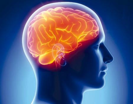 موجات المخ الكهربائية تساعد المصابين بالشلل