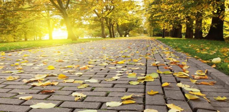 مقدمة عن فصل الخريف, خاتمه عن فصل الخريف