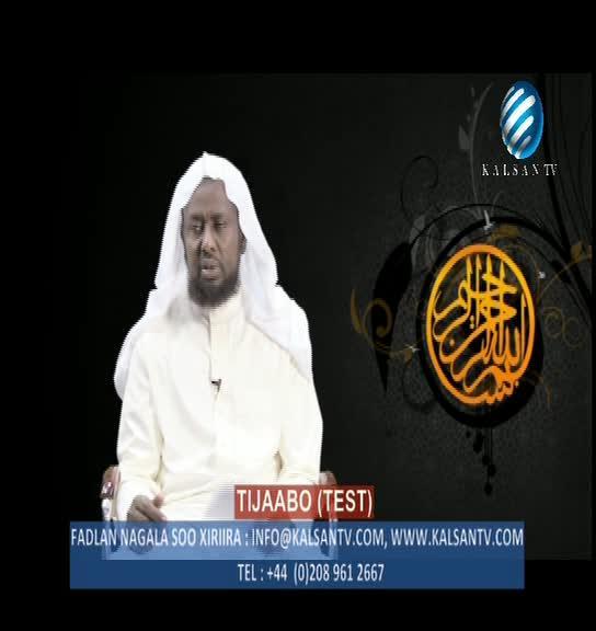 تردد قناة kalsan TV علي القمر هوت بيرد 13 درجه شرقا 2013