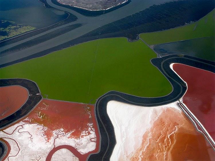صور بحيرة الملح في خليج سان فرانسيسكو